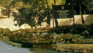 Imagen de la Fuente del Mortit